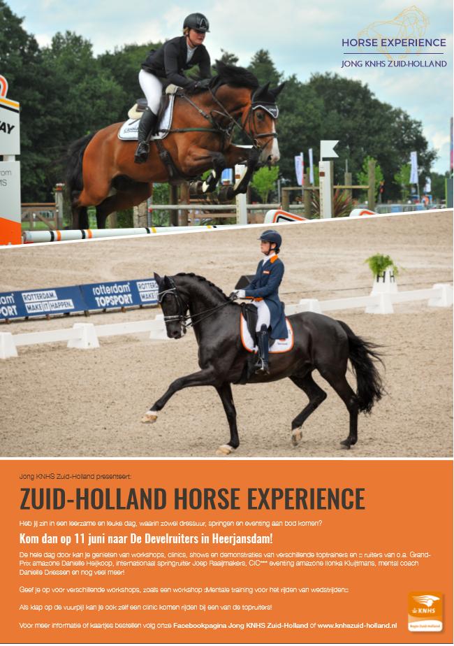 paarden zuid holland